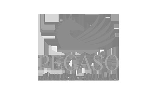 logo-2-universita-pegaso-bn-mather-campus-telematica-online-corsi-esami-matera-basilicata